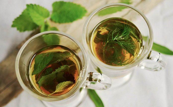 Nejlepší čaj na hubnutí - Smysl má zelený, mátový, skořicový, zázvorový i kopřivový