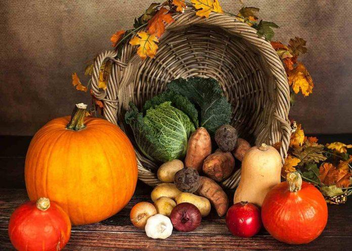 Má zeleninová dieta výsledky - Zde jsou recepty, jídelníček na hubnutí a zkušenosti s ní